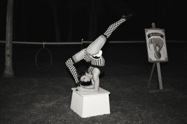 Contortionist Performer